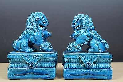 Fine Chinese Beautiful Pair Peacock Blue Porcelain Foo Dogs Statue