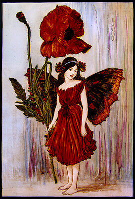 Fairy stained glass, kilnfired glass painting, flower fairy, poppy, suncatcher