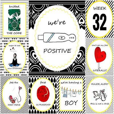 Pregnancy Milestone Cards Shabby Chic - matching baby milestones available new