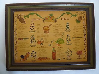 Vintage Herb & Spice Wall Hanging Chart Art in Frame Three Mountaineers Inc.1965