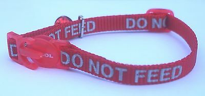 Do Not Feed Reflective Safety Cat Collar & Bell With Or Without Id Tag By Ancol