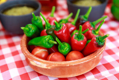 Fresh Peppers and Tomatoes on Picnic Tablecloth Photo Art Print Poster 18x12