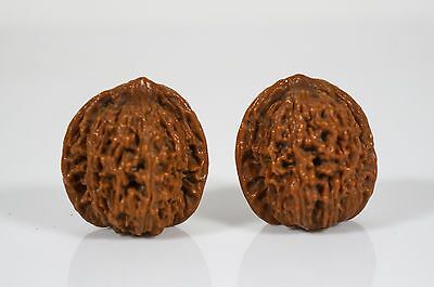 pair of chinese walnuts