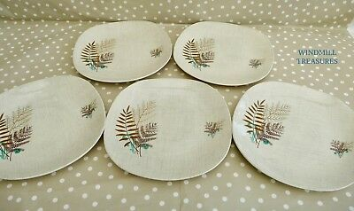 5 J & G MEAKIN 'ROCK FERN' DINNER PLATES 24.5cm - FAB CONDITION