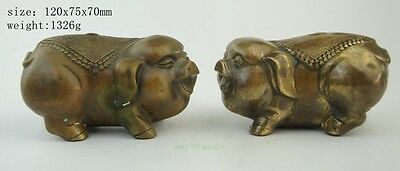Chinese Fengshui Brass Animal Zodiac Year Pig Fu Lovely Statue Sculpture Pair