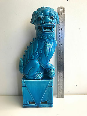 XLG turquoise blue chinese foo dog 31 cms high temple dog