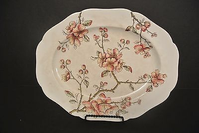 "Aesthetic English Transferware ""New Apple Blossom"""