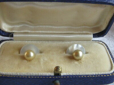 Boxed Pair Of Antique Mother Of Pearl & Pearl Dress Studs