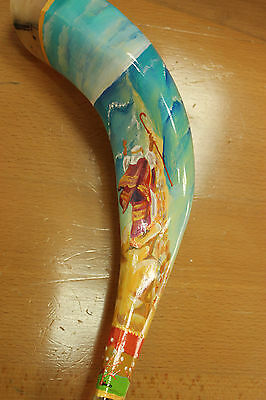 "14""-16""  Ram Horn Shofar.Hand painted polished new.Exodus"