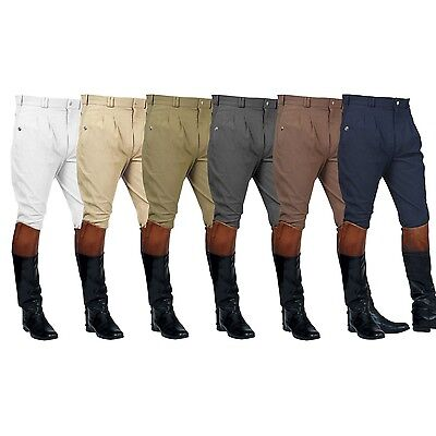 Mark Todd Auckland Mens Breeches - SALE