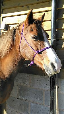 EASY-DOES-IT Top Quality PURPLE Rope Halter. All sizes. Parelli, Horsemanship