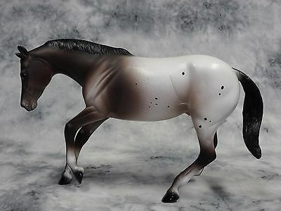 Peter Stone * Appt to Appeal * Appaloosa Performance Traditional Model Horse