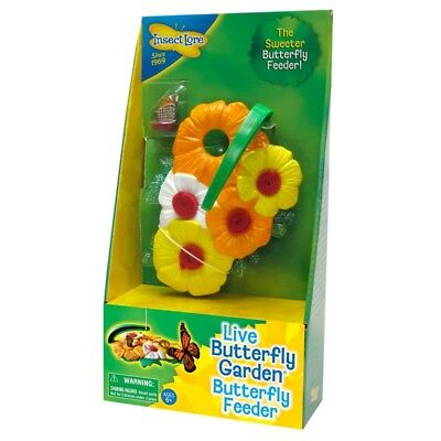 Butterfly Feeder - Insect Lore