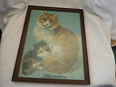 "4-2017-Picture Of Mama Cat And Her Baby Kitten Print-So Sweet-9 X 11""-Lqqqkiee"