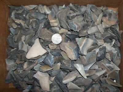 1 fossil megalodon shark tooth per lot.
