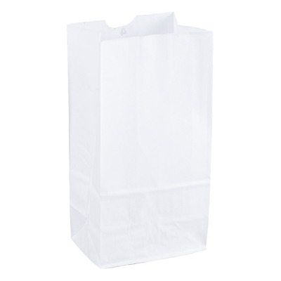 Duro Grocery/Lunch Bag, Kraft Paper, 4 lb Capacity, (100 Count) (White)