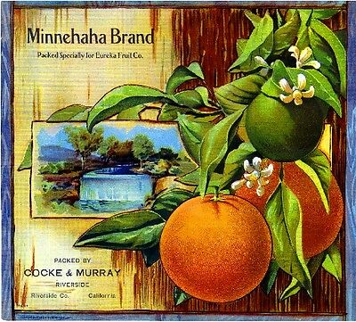 Riverside Minnehaha Brand Oranges Orange Citrus Fruit Crate Label Art Print