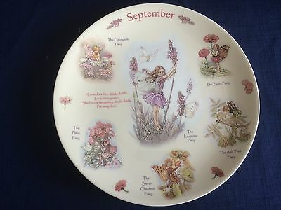 Coalport A Calendar Of Flower Fairies -September plate