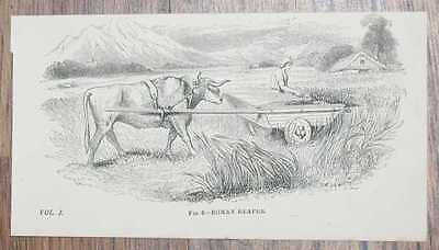 """Engraved Plate from C19 Agricultural Book showing a """"Roman Reaper"""""""