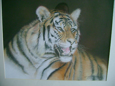 An Original Pastel Painting By Seller  Vi-Nghi  ( Artist)