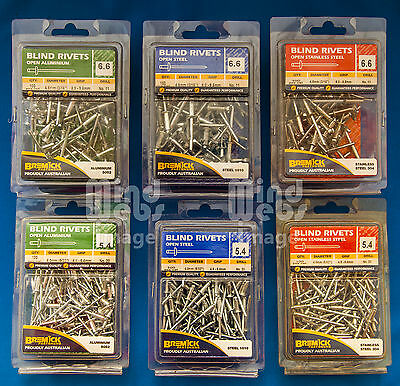 Truss Head Blind Rivets (POP) 6 Packs of 100pcs per pack (600pcs)