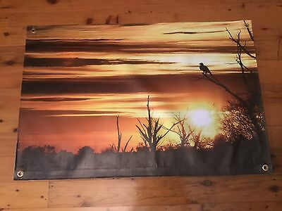 Sunset vinyl print 3 x2 ft Indian woman eagle pool room man cave poster