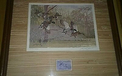 1981-82 Arkansas Duck Stamp Print First of State