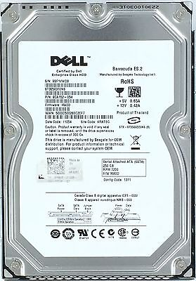 DELL Seagate 250GB 7200RPM Sata-enterprise ST3250310NS 9CA152-054