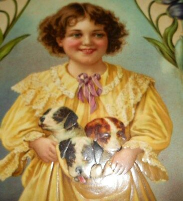 Large 1900 Victorian Embossed Die Cut Adv Sign Young Boy With Puppy Dogs Nos