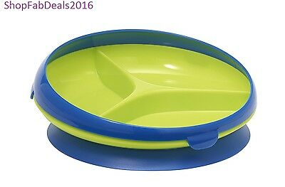 Toddler Plate Suction Sectioned Plate Blue Green New Baby Plate Stay Put Plate