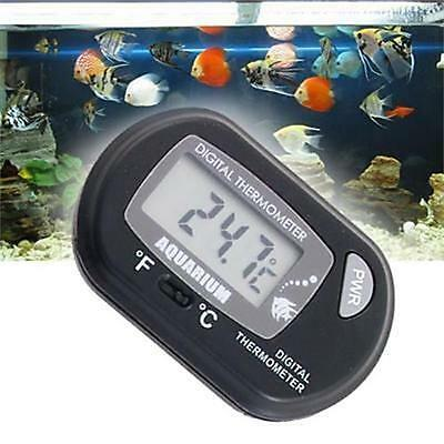 Digital Aquarium / Terrarium Thermometer £2.99 UK SELLER FREE P+P 24HR DISPATCH.