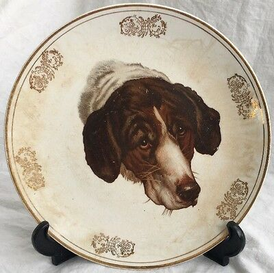 Antique German Shorthair/English Pointer Old Hunting Dog on Point China Plate 9""