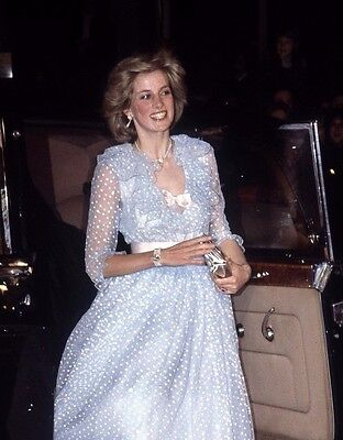Lady Diana Spencer , Princess of Wales & Queen of our Hearts 8x10 PHOTO - H870