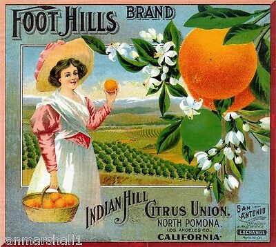 Pomona California Foot Hills Brand Orange Citrus Fruit Crate Label Art Print