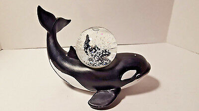 "Snow Globe Killer Whale Orca Collectible Nautical Ocean Sea Mammal 2.5"" x 5"""