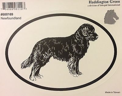 New! Haddington Green Newfoundland Decal
