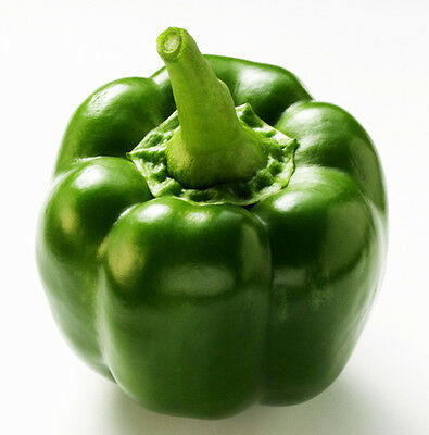 Green Sweet Pepper Seed 8 Seeds Capsicum Frutescens Annuum Pimento Seed Hot C064