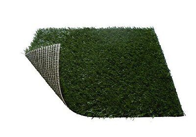 "Replacement Grass For Pet Zoom  Pet Potty Dog Toilet Training 25"" X 20"" X 2"""