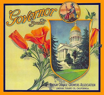 Lindsay Governor California Poppies Orange Fruit Citrus Crate Label Print 2