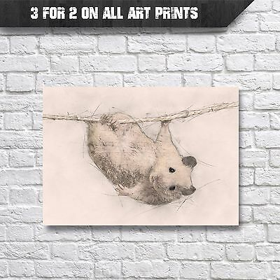 Syrian Hamster Wall Art Print, Pencil & Watercolour digital Painting, A4 Prints