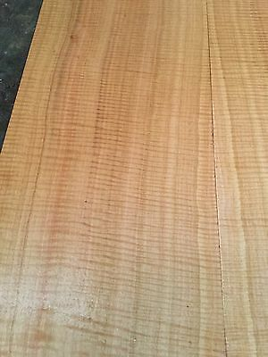 Fiddleback Sugar Gum Electric Guitar Drop Top . Luthier #696