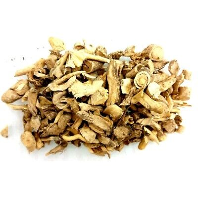 Dittany Root - Herbal Incense Fragrance Magikal Potion Ritual Wicca Pagan Goth
