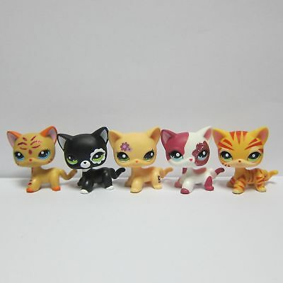 lot5 Littlest Pet Shop LPS Loose Toys Kitten Cat #2291 #2118 #2249 #1962 & #1451