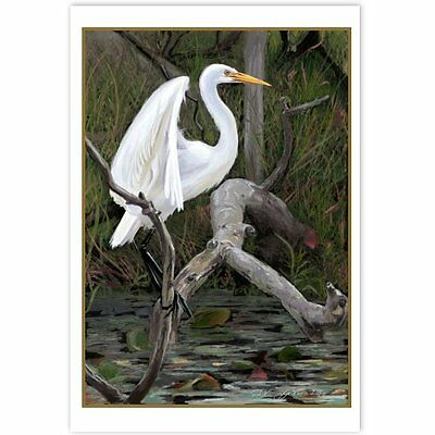 © ART - NEW Heron Australian Water Bird Wildlife Original artist print by Di