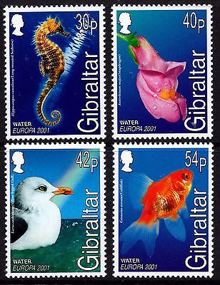 Gibraltar 2001 Europa Water and Nature Complete Set SG 968 - 71 Unmounted Mint