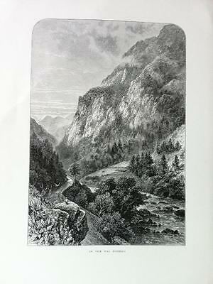 IN THE VAL D'OSSAU, PYRENEES c1876 Original engraved print of Picturesque Europe