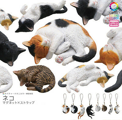 Nature Techni Color MONO PLUS CAT (Strap type) KITAN CLUB