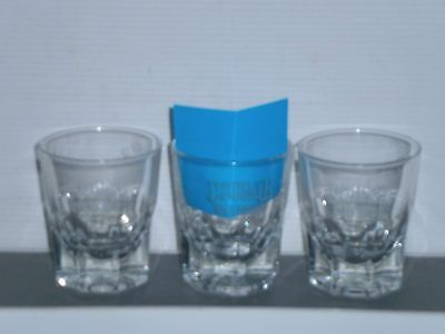 APKS206 Collectable Cougar Bourbon Whiskey Shot Glasses
