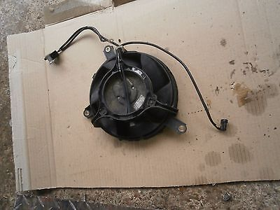 Honda Vtr1000 Firestorm 96-02  Radiator Fan