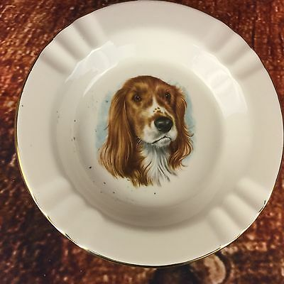 Vintage Ashtray Bowl Dish Dog English Brittany Springer Spaniel Sporting Dog